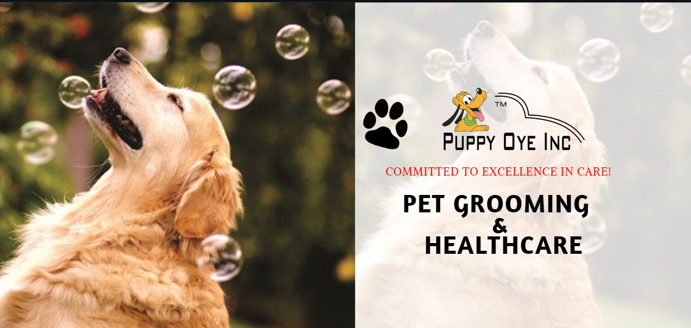 PET GROOMING & HEALTHCARE